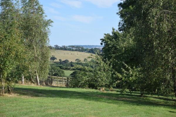 Scarletts barn view